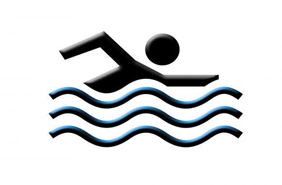 section natation logo